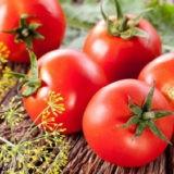 Pomidor tushda korsa