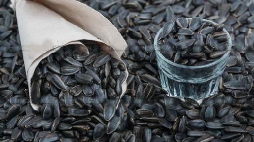 Tush kitobida urug'larning(pistaning) talqini